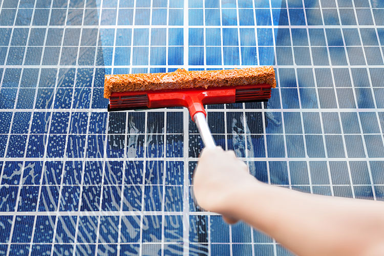 solar panel being cleaned at home